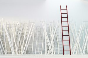Careers Ladder