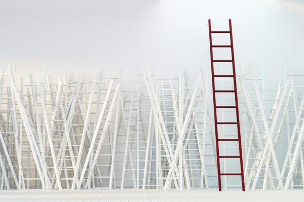 Careers Ladder